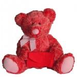 Envelope Bear ($14.98)