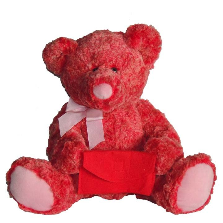 Envelope Bear ($14.98)