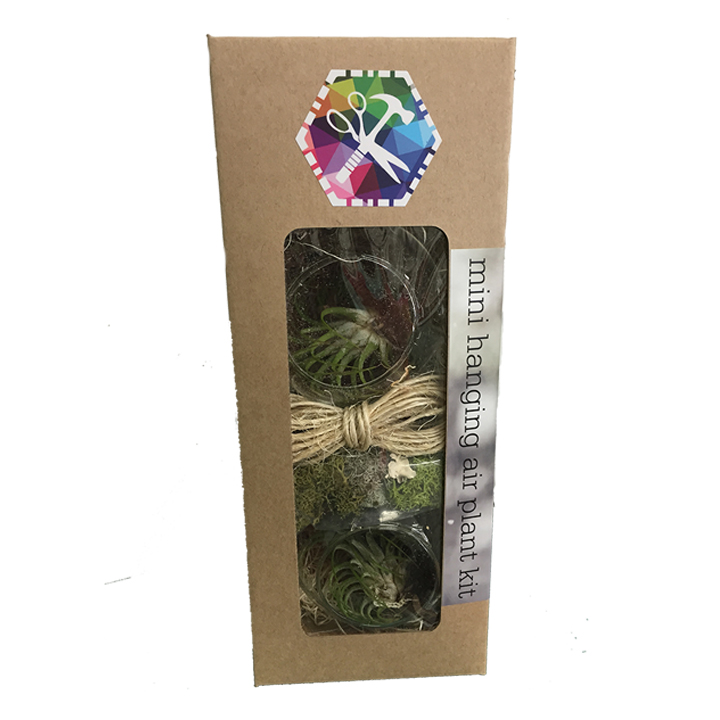 mini hanging air plant kit