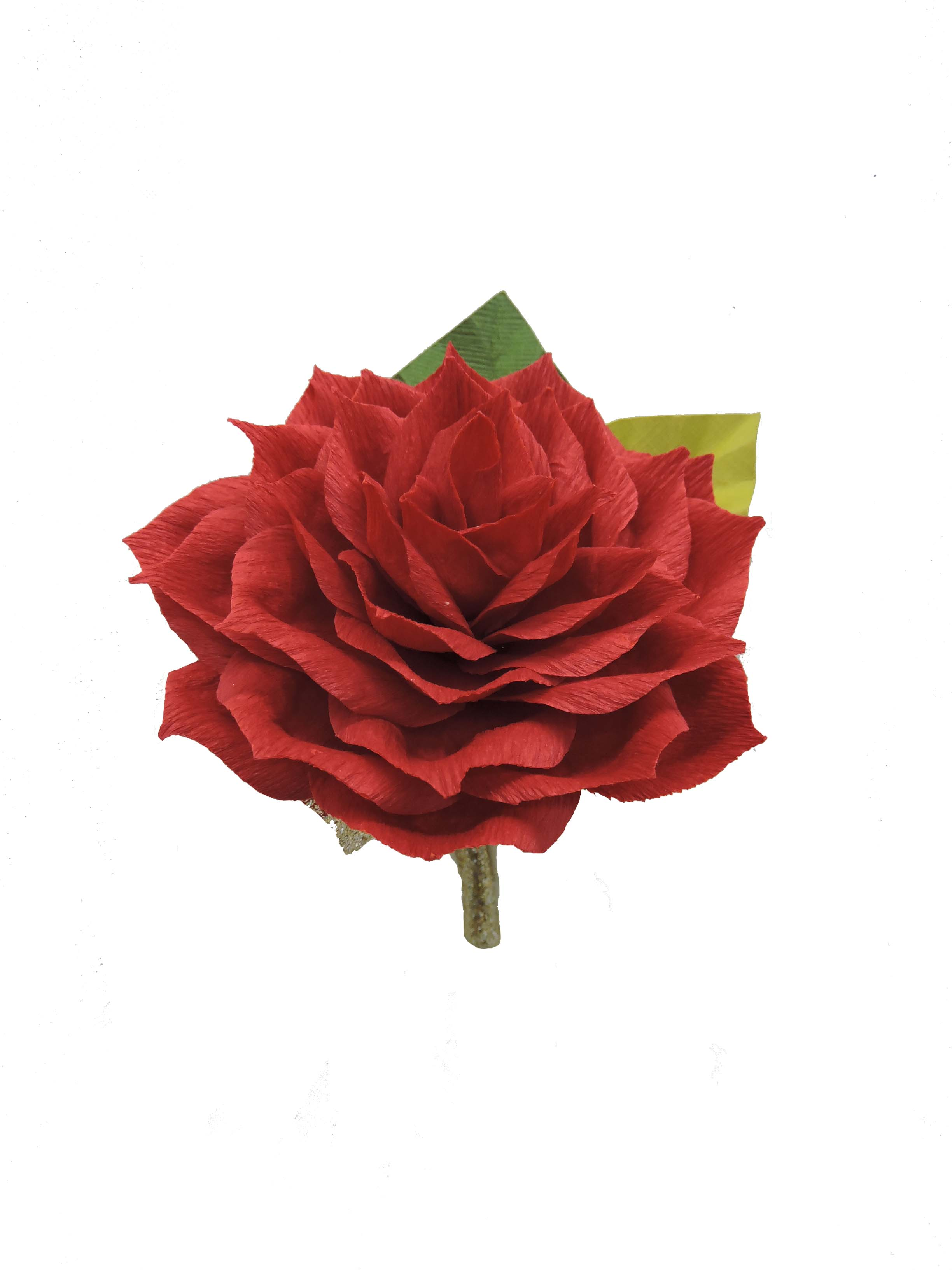 Paper Red Rose Bout