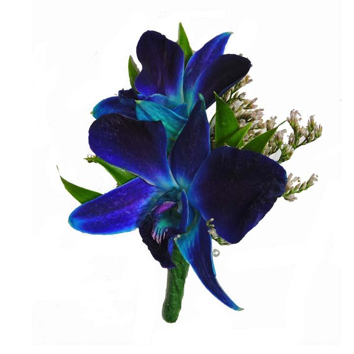 Blue Dendrobium Orchid Boutonniere Cbbpas05 Flower Patch